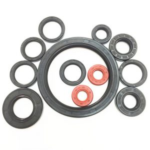 Double-Lip-Oil-Seals-Used-in-Automotive-Engine-Applications